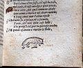 Divina commedia... ridotta a miglior lezione dagli accademici della crusca, per domenico manzani, firenze 1595, 04 gatta.jpg
