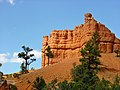 Dixie National Forest, Red Canyon - panoramio - Frans-Banja Mulder (2).jpg