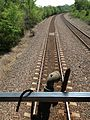 Dog on the Rails (8762159259).jpg