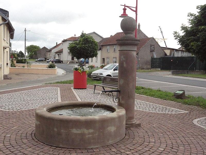 Dolving (Moselle) fontaine, place des Érables