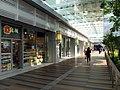 Domain mall LG3 Shops 201301.jpg
