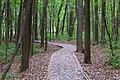 Domaine de Maizerets park, Québec city, Canadá 02.jpg