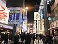 Dotombori Shopping Street at night 20190201.jpg