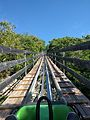 Dragon's Tail Alpine Coaster (31895455891).jpg