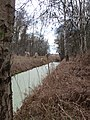 Drain running though Holme Fen - April 2016 - panoramio.jpg