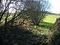 Drewsteignton Footpath 5 - geograph.org.uk - 290548.jpg