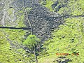 Dry Stone Fencing near Llanberis - panoramio.jpg