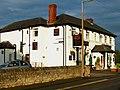 Dusty Miller - geograph.org.uk - 931001.jpg