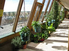 Earthship inside greenhouse.JPG