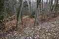 Ehemalige Befestigung am Eibenwald Wall.jpg