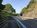 Ehime Prefectural Road No.21 on east side of Mimura Pass.jpg