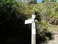 Entre Montbau i la Rabassada P1050967.jpg