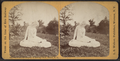 Eve and the Serpent, in Eldridge Park, Elmira, New York, by Walker, L. E., 1826-1916.png