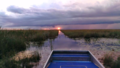 Everglades-airboat-tours 960.png