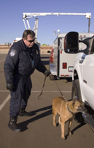 Explosive detection - A U.S. Customs and Border Protection officer with an explosive-detection dog