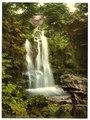 Fairy Falls, Trefriew (i.e. Trefriw), Wales-LCCN2001703561.tif