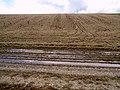 Fallow Field - geograph.org.uk - 484450.jpg