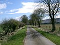 Farm Road - geograph.org.uk - 159468.jpg
