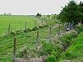 Farm track near Cotbank - geograph.org.uk - 177355.jpg