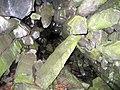 Fekete-oszlopos-barlang.jpg