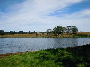 Scarrow Beck - Image: Felbrigg Pond 29 July 2014