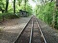 Festiniog Railway at Plas Halt (geograph 4015980).jpg