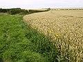 Fields near the B1248 - geograph.org.uk - 512547.jpg