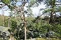 Finland - panoramio (17).jpg