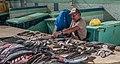 Fishmonger fish cleaning 9.jpg