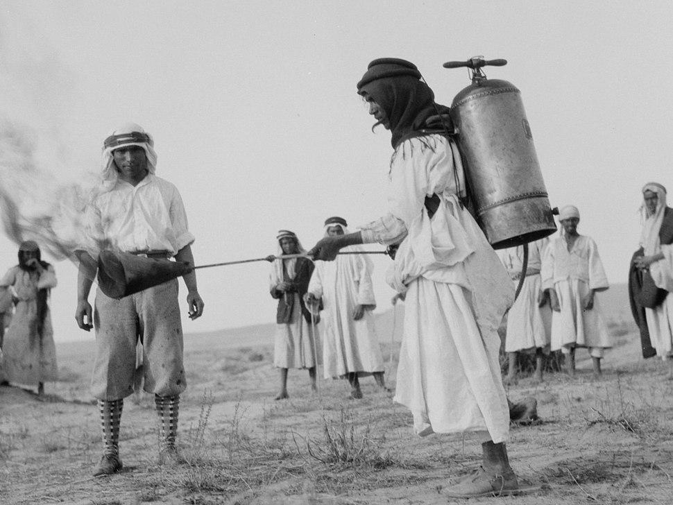 Flaming Locusts in 1915