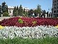 Flori - panoramio.jpg
