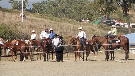 Caldoches, European people born in New Caledonia Foire chevaux.JPG