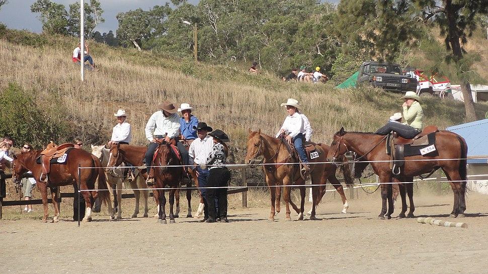 Foire chevaux