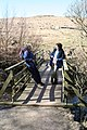 Footbridge across Sannox Burn - geograph.org.uk - 824701.jpg