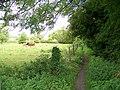 Footpath, Corton - geograph.org.uk - 1479364.jpg