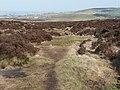 Footpath over Ovenden Moor, Ovenden - geograph.org.uk - 1363194.jpg