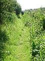 Footpath to Horkstow Bridge - geograph.org.uk - 535463.jpg