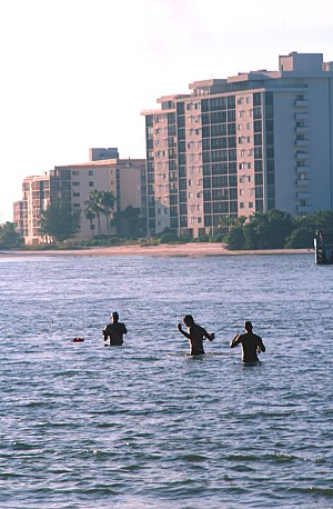 Southwest Florida - Fishermen wading in Fort Myers Beach.