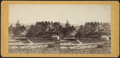 Fort William Henry Hotel, from the Plank Road, Cauldwell (Caldwell), from Robert N. Dennis collection of stereoscopic views.png
