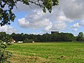 Forty Acre Plantation, Billericay, Essex - geograph.org.uk - 53928.jpg