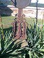 Fotonová věž - Vimperky 02.jpg
