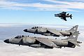Four Sea Harrier FA2s of 801 Naval Air Squadron, based at RNAS Yeovilton, are shown flying in formation as part of a Photex. MOD 45146115.jpg