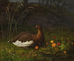 Frants Bøe - Ptarmigan and Cloudberry, 1874.jpg