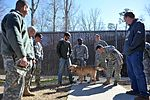 From 'untrainable' to inseparable, K-9 finds new 'pack' through adoption 140228-F-CK351-040.jpg