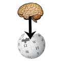 From brain to wikipedia.png