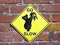 GOC The Pelhams 012 Go Slow (28048404081).jpg