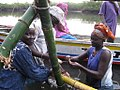 Gambian women oyster havesters.jpg
