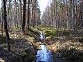 Garkalnes novads, Latvia - panoramio (20).jpg