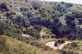 Garrigue - Garigue in Languedoc, Occitanie.