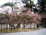 瑞巌寺(ずいがんじ)